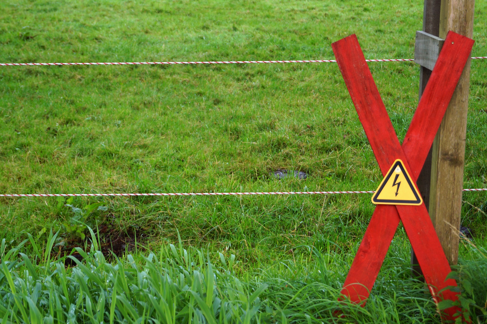 electric fence to stop people feeding horse